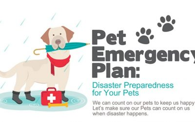 Pet Emergency Plan: Disaster Preparedness for Your Pets  (Infographic)